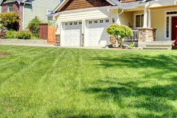 Round Rock home with a professionally mowed and maintained lawn.